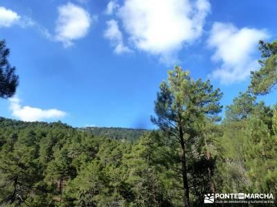 Jarosa - Agua y Bosque Plateado; fin de semana senderismo; viajes organizados; senderistas